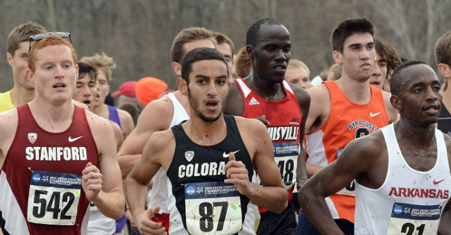 Moussa finished fifth at the 2014 NCAA Cross Country Championships.